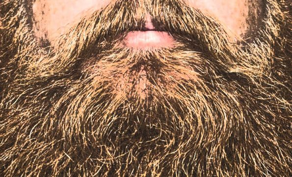 Beard Oil Frequently Asked Questions